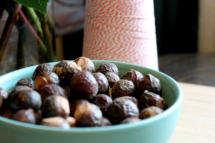 Soap nuts in bowl