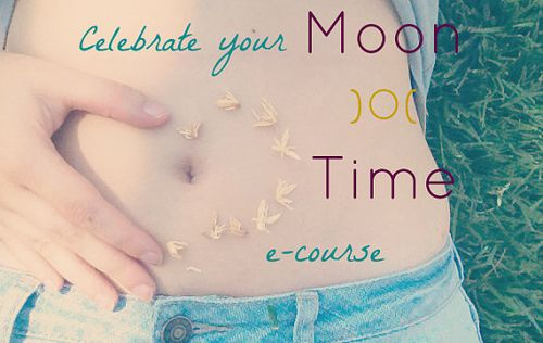 Moon time ecourse